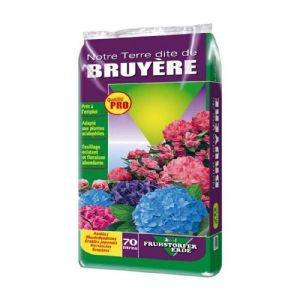 Terre de Bruyère